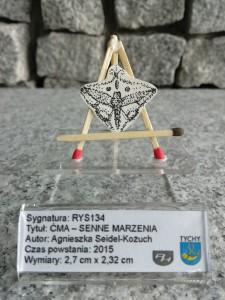 12 h / ĆMA – SENNE MARZENIA – Agnieszka Seidel-Kożuch