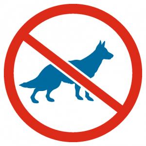 UWAGA Muzeum zakaz wpuszczania zwierząt (psów, kotów itp.)